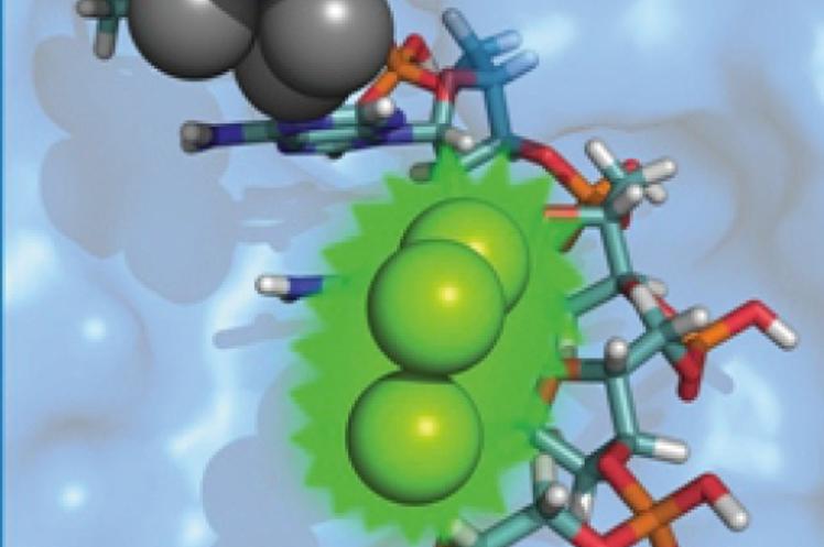 Питерские учёные заставили светиться ДНК с помощью серебра